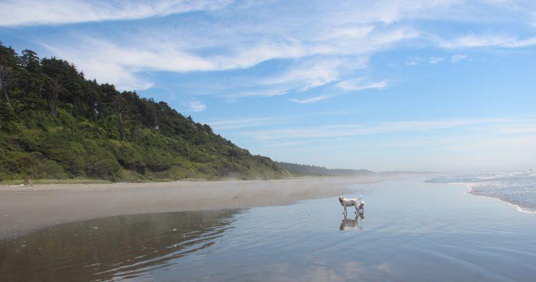 Weekend Getaway: Iron Springs Resort, Copalis Beach, WA